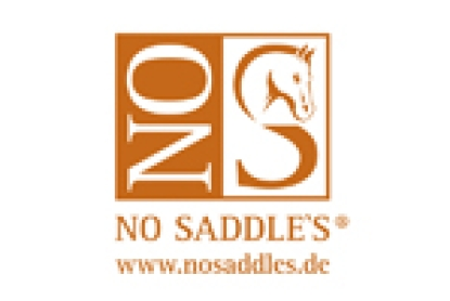 NO SADDLES
